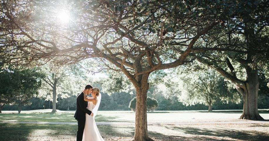 Your Storybook Wedding Begins at Avon Oaks